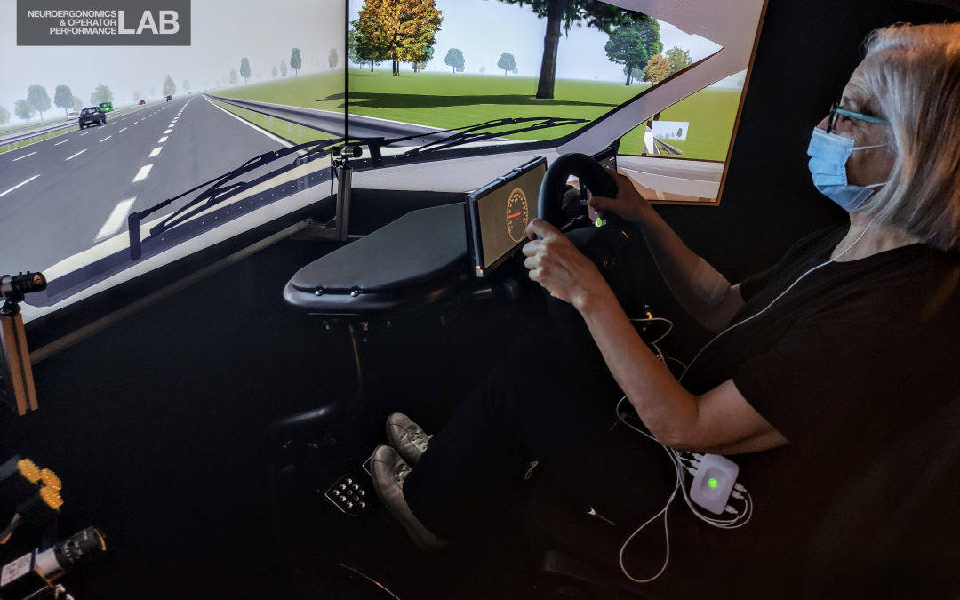 Sensior drivers for defining the driver role for future automated vehicles